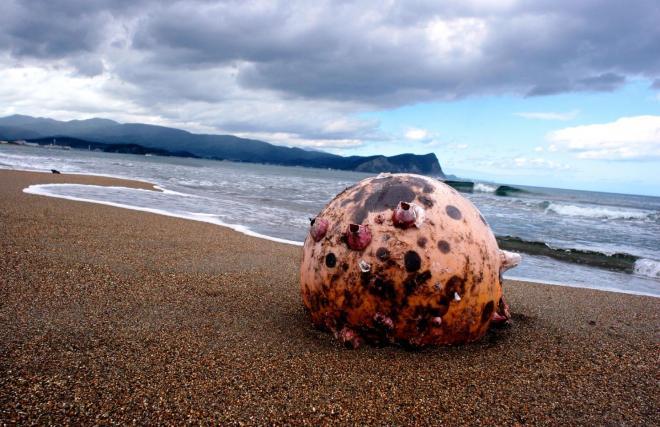 スコットランドの風景に似ていると、リタがよく散歩したフゴッペ海岸=北海道余市町で
