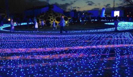 青色LED電球を30万個使ったイルミネーション=2010年12月4日、十和田市西三番町