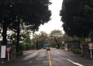 東京・三鷹市にある国際基督教大の入口
