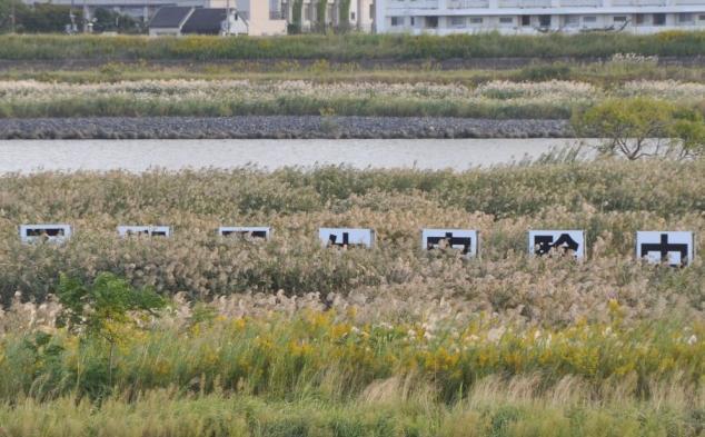 実験を終えても「干潟再生実験中」!?=大阪市東淀川区柴島1丁目付近