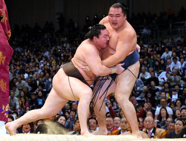 白鵬(左)は鶴竜を寄り切り、32度目の優勝を決めた=池田良撮影