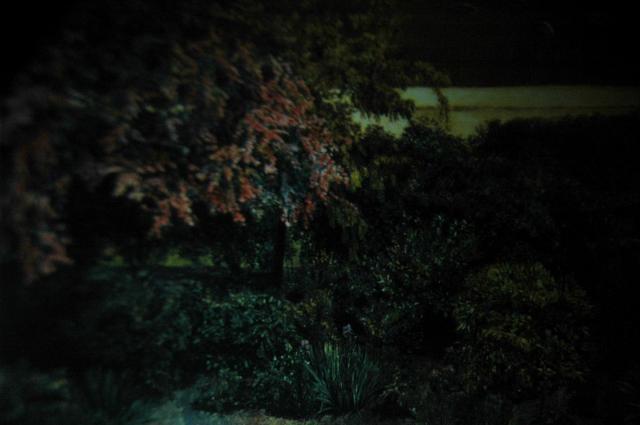 「夜 1848」2010年©Ryoichi Suzuki Courtesy of Emon Photo Gallery実はラファエル前派の図録にあった絵画の一部を撮ったもの。昼の風景を描いたものだが、夜の暗闇で撮影した