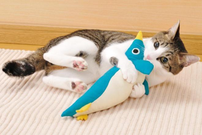 けりぐるみで遊ぶネコ