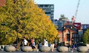 東京駅・丸の内駅舎(奥)とイチョウ並木の前を走る「皇居ランナー」たち=2012年11月、東京・丸の内