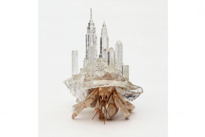 3Dプリンターで作ったヤドカリの貝殻=(c)Aki Inomata