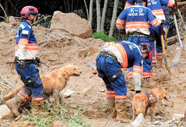 広島土砂災害で捜索活動をする災害救助犬の夢之丞(右)とハルク