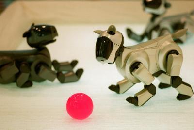 イヌ型ロボットとして一世を風靡(ふうび)した「アイボ」=東京・南青山で