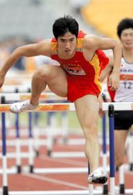 アテネ五輪金メダリストの劉翔、新浪微博での影響力はあまりない