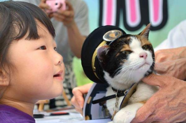 2013年5月26日 あこがれの三毛猫「たま駅長」との記念撮影でにっこり=和歌山市伊太祈曽