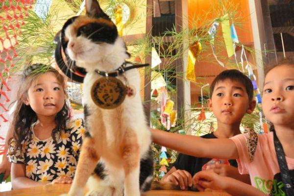 2014年7月5日 七夕の飾り付けに参加した子どもたちとたま駅長=紀の川市貴志川町神戸