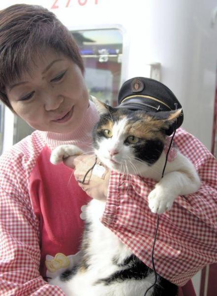 2007年1月5日 駅長に就任したネコのたま=和歌山県紀の川市貴志川町の和歌山電鐵貴志駅で
