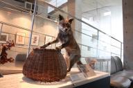 「リアルごん」が出迎えてくれる新美南吉記念館