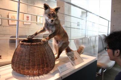 昨夏寄贈された「帰ってきたごん」=愛知県半田市の新美南吉記念館