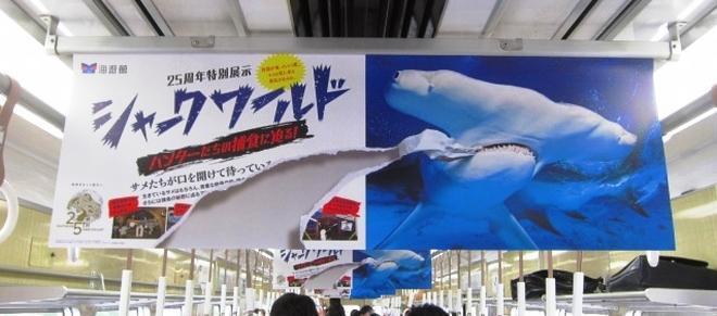 阪急電車に掲示されている、実際は破れていないシュモクザメのポスター。だまし絵的な表現を使っている