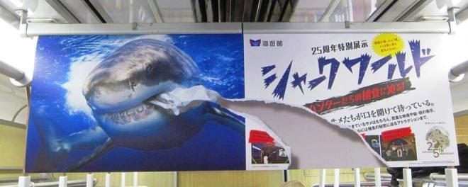 阪急電車に掲示されている、実際は破れていないホホジロザメのポスター。だまし絵的な表現を使っている