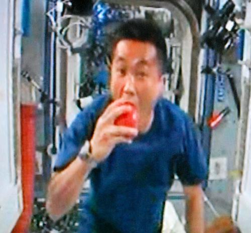リンゴの鮮度保持力を確認する若田光一さん=2009年3月22日