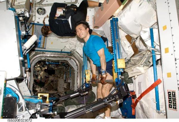 AREDと呼ばれる装置で筋肉トレーニングにはげむ若田光一さん=2009年7月20日、NASA提供