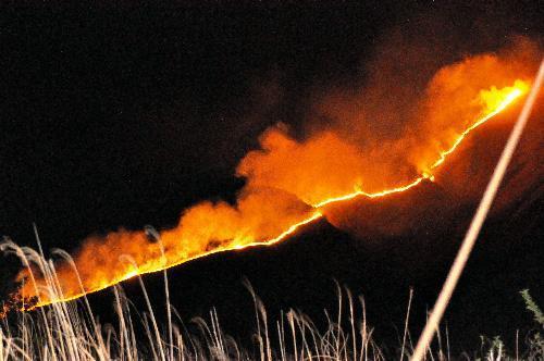 別府の山火事。山の斜面で燃え広がる炎=2014年4月24日、大分県別府市、河合達郎撮影