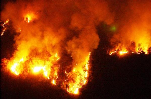 愛媛の山火事。炎をあげて燃える山林=2002年4月1日