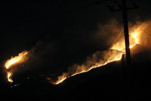 別府の山火事。野焼きのように防火帯沿いに広がる炎=2014年4月24日、大分県別府市、加藤勝利撮影