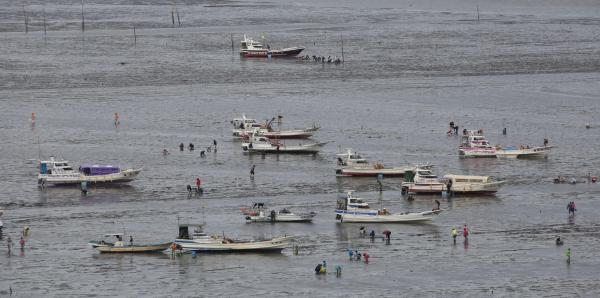 有明海の潮が引き、漁船から下りて潮干狩りを楽しむ観光客=2014年4月、藤脇正真撮影