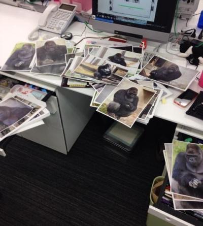 シャバーニの写真でいっぱいになった鈴木さんのデスクまわり=小林編集局長提供