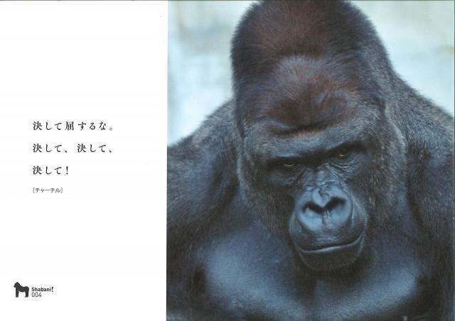 写真集「シャバーニ」の中から=扶桑社提供