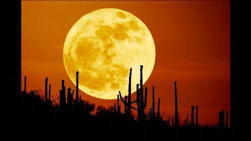 【2012年5月4日】米国アリゾナ州で撮影された「スーパームーン」=NASA提供