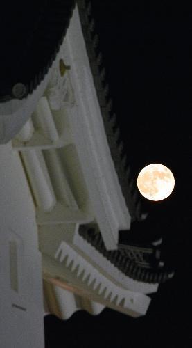 月が地球に接近し大きく見える「スーパームーン」。2015年9月28日、駿府城公園の坤櫓(ひつじさるやぐら)の脇から姿を現した=静岡市葵区、杉本崇撮影