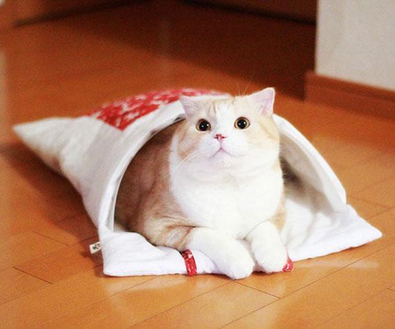 「猫のお布団」
