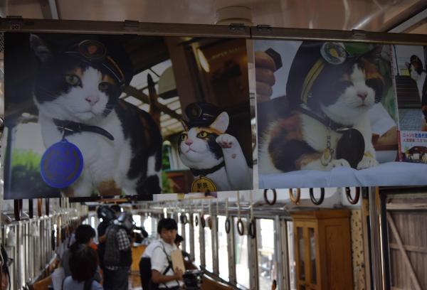2015年9月15日 たま電車内に並ぶ「たま名誉永久駅長」の写真