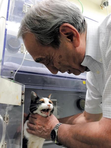 2015年6月21日 たま駅長(下)を見舞う和歌山電鉄の小嶋光信社長。逝く前日までは元気な姿を見せていたという