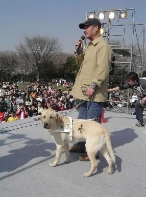 盲導犬クイール役のラフィー=2004年3月