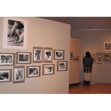 「盲導犬クイールの一生」写真展=2003年10月18日