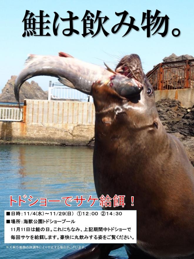 トドショーのポスター=おたる水族館提供