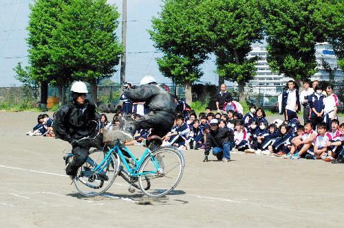自転車同士の事故の再現で倒れるスタントマン。生徒たちは真剣な表情で見守っていた=神奈川県伊勢原市の伊勢原高校