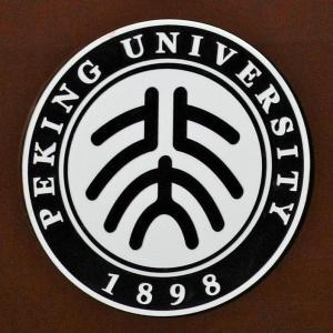 中国を代表する大学、北京大学のロゴ