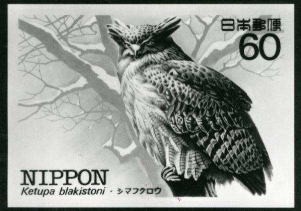 1983年発行、シマフクロウの60円切手