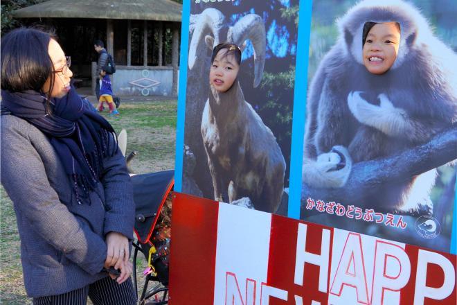 干支にちなんだ、サルの看板から顔をのぞかせるこども=金沢動物園、2015年12月19日