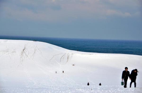 朝からの降雪で真っ白になった鳥取砂丘=2013年12月20日