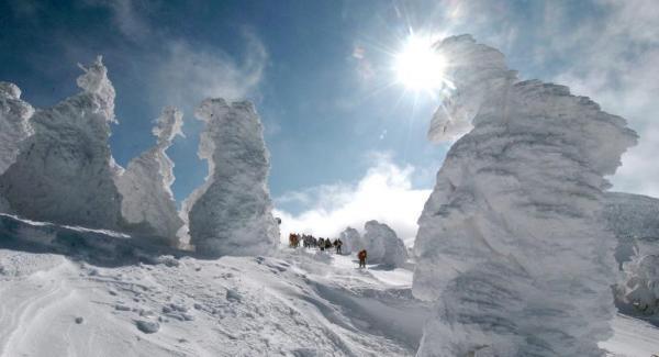 山形市の蔵王温泉スキー場の樹氷=2005年1月28日