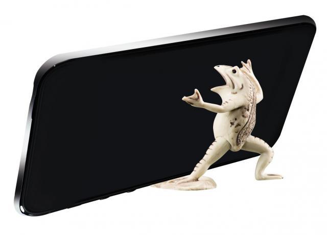 スマートフォンを支える蛙