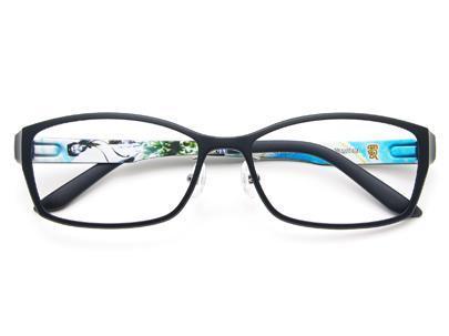 諸葛亮の眼鏡