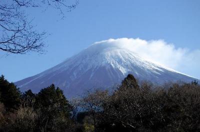白雪に覆われた富士山=2016年1月20日、富士宮市の白糸の滝展望台