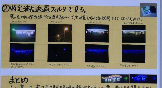 紫外線透過フィルターでコンビニの外観を撮影した写真。左端が昆虫がよく集まる店舗