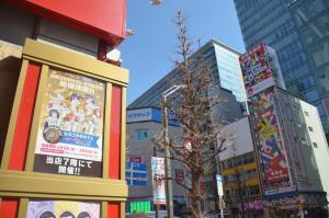 東京・秋葉原には、スマホゲーム関連の看板や広告も多い