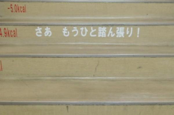 2階から3階にかけてのメッセージ