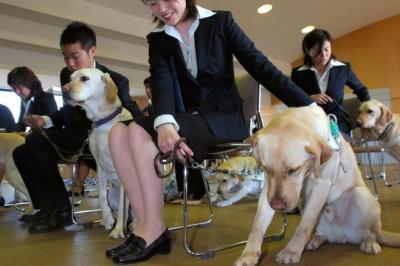 盲導犬訓練士学校基礎科を卒業する第1期生=2006年3月、横浜市港北区新吉田町の日本盲導犬協会神奈川訓練センターで