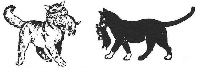 アライド・ヴァン・ラインズ社(左)と、その関連会社の「親子猫マーク」