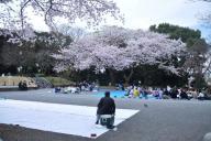場所取りをする男性。「夜までまだまだ長いのさ」と言っていた=4月、横浜市の掃部山公園、軽部撮影